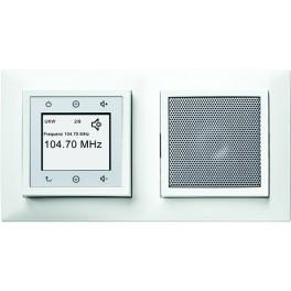 Berker kwadrat Radio Touch 28808989 w ramce podwójnej 5310128989
